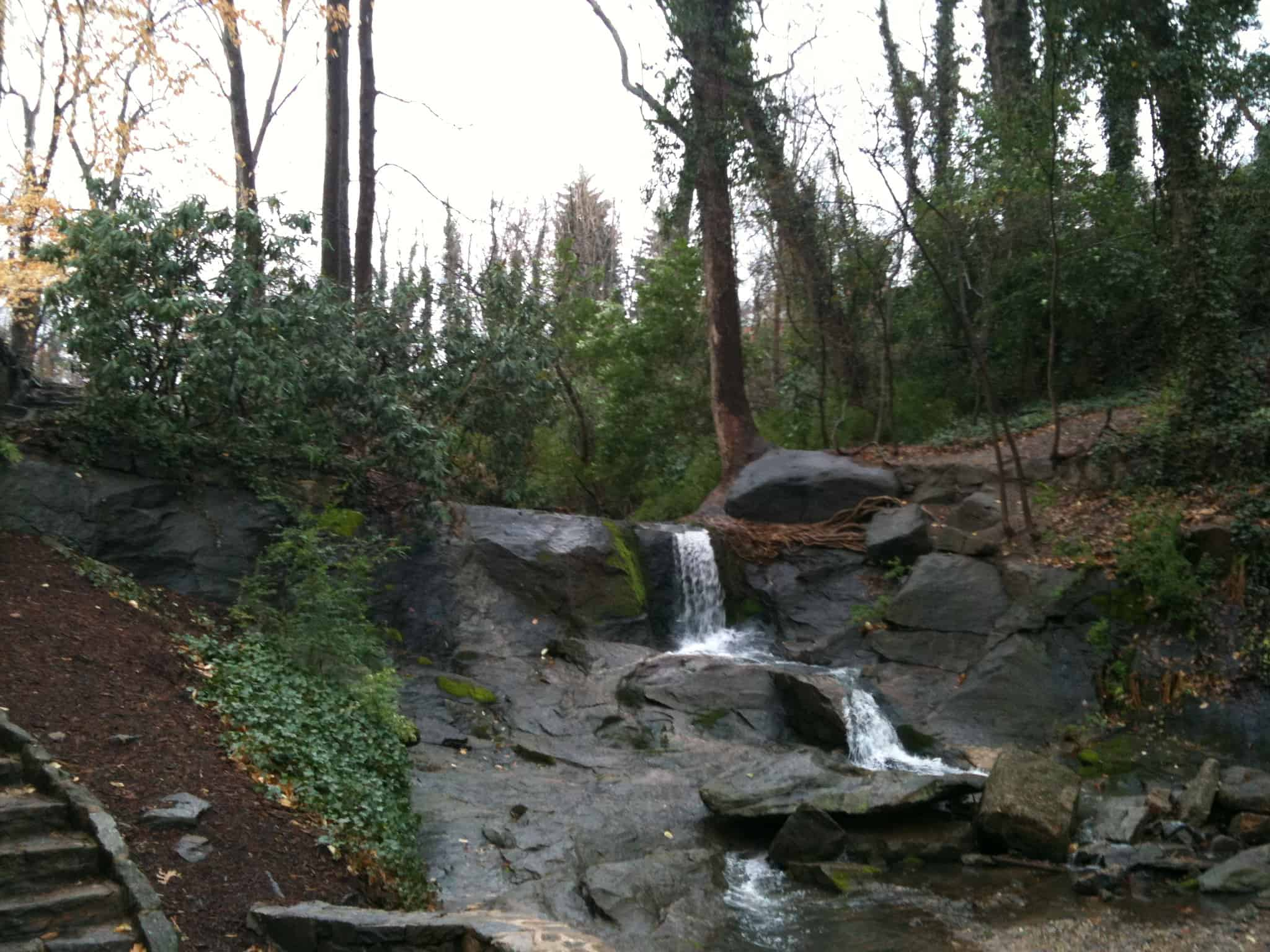 Landscape Design for a Greenville, SC, Public Park: Part One
