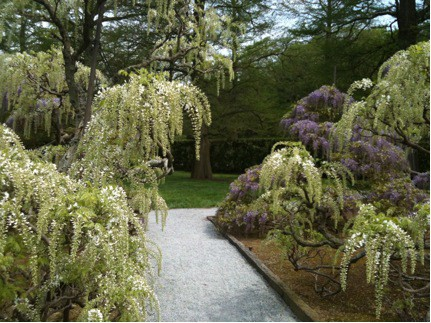 Landscape Design: Repeating Garden Elements - Julie Moir Messervy ...
